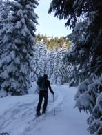 Aufstieg durch die Wintermärchenlandschaft - darüber taut es schon.