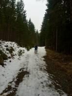 Forststraße mit wenig Schnee