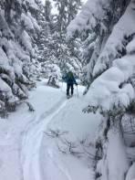Winterwonderland im Mürzer Oberland