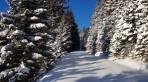 Winterlich endlich auch im Gleinalm Gebiet.