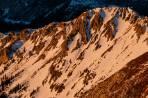 Wildkamm Südsteite - Abfahrtsspuren vom Gipfel