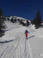 Richtung Triebenfeldkogel