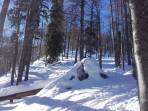 Guter Pulverschnee im Wald, manchmal steile Aufstiegsspur