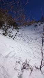 Trenchtlingrinne nach oben: geknollt