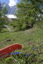 der Enzian blüht, der Ski ist dennoch im Einsatz