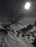 Das Mondlicht glitzert im Schnee und wirft kräftige Schatten