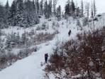 Buschwerkpassage