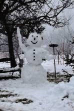 Jede Schneequalität hat ein ideales Anwendungsgebiet (1.1.)