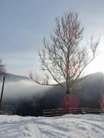 Im Tal Nebel über 800 m teilweise Sonnenschein