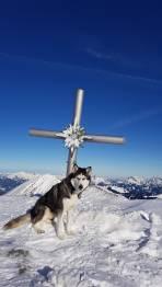 Berg Heil! Gipfel Gamskögel 2386m