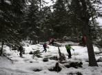 wenig Schnee im steilen Hochwald bei der Abzweigung in den Brunngraben