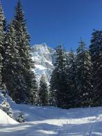 Dachstein grüßt schon rüber am Beginn des Aufstiegs