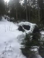Noch genug Schnee
