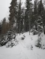 Auf der Skitourenroute 1