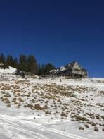 Sonnseitiger Schneemangel bei der Zechneralm