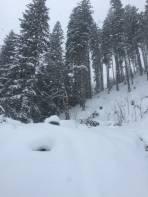 Winterwonderland im gesamten Tourenbereich