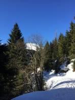 Breiteckkoppe lugt beim Forststrassenaufstieg hervor