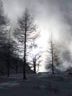 Auch im freien Gelände gibt es bereits eine beachtliche Schneedecke