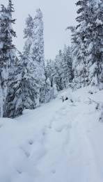 Tiefster Winter2