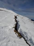 Schneemäuler am Abgrund in den Großen Steinkorb.