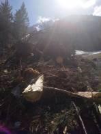 Lawinen Reste von der unteren lahningries bis auf die Skipiste von losenheim vor ca einem Monat