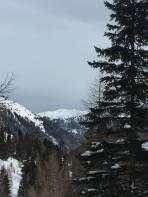 Schöne Aussicht nach Osten ober der Scharnitzalm