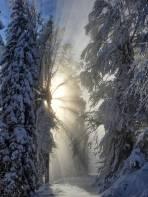 Nebelgrenze II