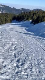 Abfahrt über die schneebedeckte Mautstraße