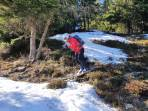 Schneefleckerlhupfen oberhalb der Zechneralm