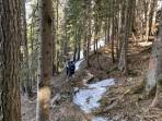 die kurze Waldquerung zur Edelbodenalm