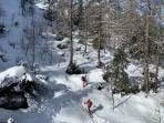 1350m: geschlossene Schneedecke