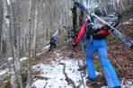 in der ersten Waldsteilstufe