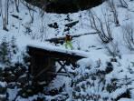 Anstieg im Hartelsgraben