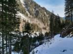 die wildromantisch gelegene Lackneralm