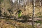 ... und mit dem Rad retour zur Baumschlagerreith